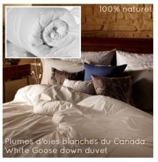 couette naturelle t 7 tog 425g en plumes d 39 oies blanches du canada et tissu coton bio. Black Bedroom Furniture Sets. Home Design Ideas